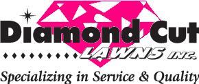 Diamond Cut logo 7431 hot pink